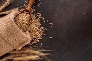 Cereales integrales en la dieta en Albacete
